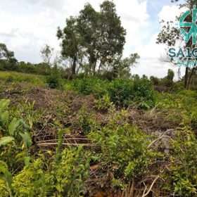 Mảnh đất chuyển mục đích sử dụng đất